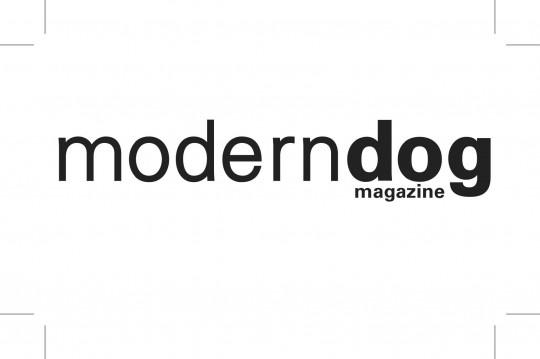moderndog
