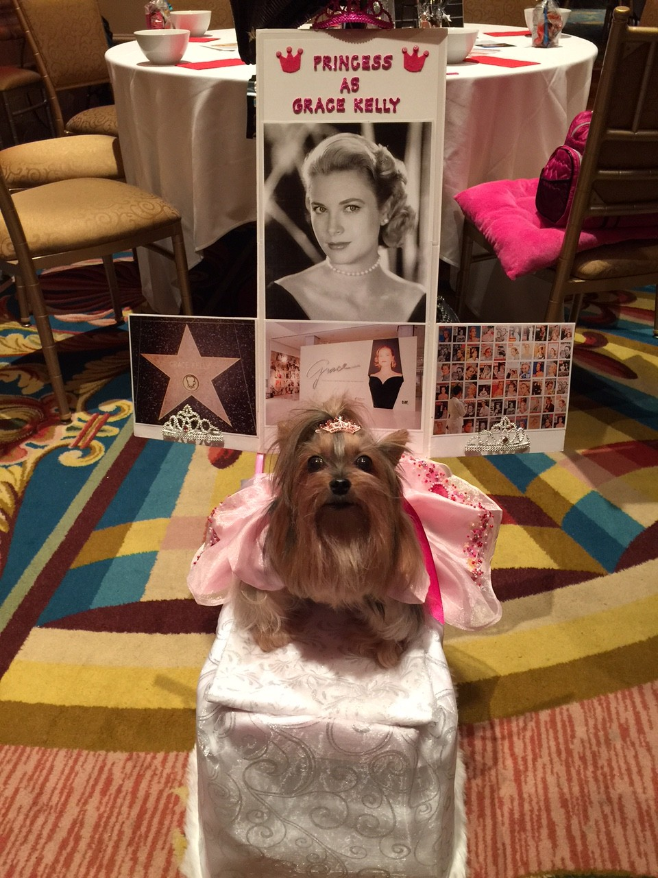 Woofstock's Movie Star Doggie High Tea