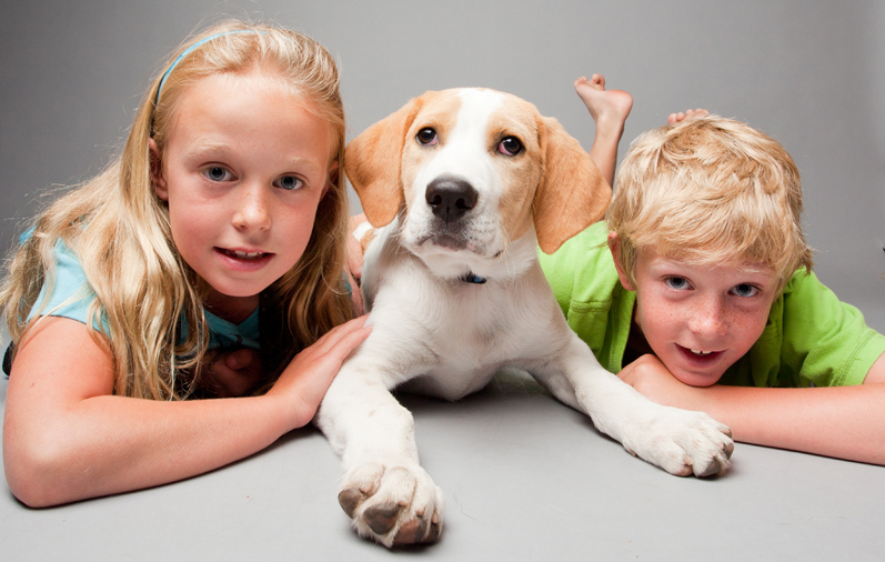 Join the Ontario SPCA today and add a new Family member