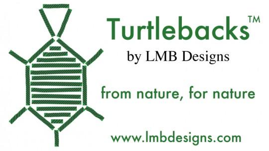 Turtlelogowinfonew