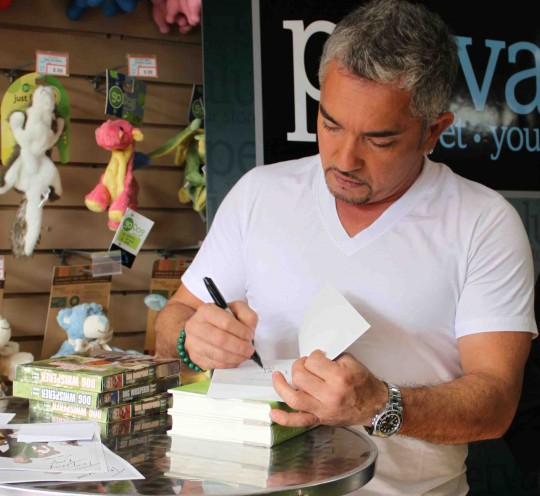 "Cesar Millan signing his book "" How to Raise the Perfect Dog."""