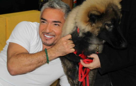 Cesar Millan with a German Sheppard