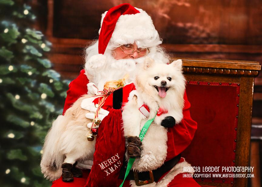 Being Santa. Ho, Ho, Ho…