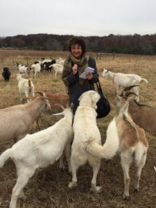 Little Seed Farm working dog Mordecai wanted to get into photo with goats when Linda Barnard visited Little Seed Farm in Lebanon, Tenn. for a travel story in November