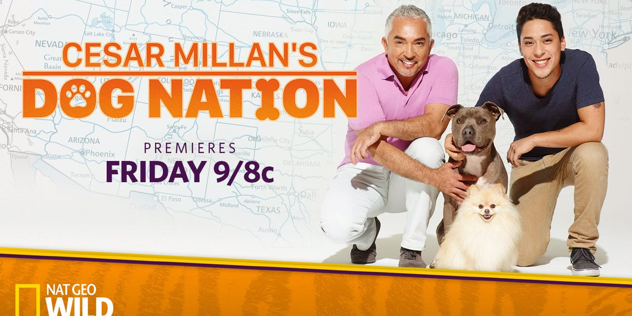 Cesar Millan's Dog Nation premieres Friday, March 3, at 9/8c on Nat Geo WILD
